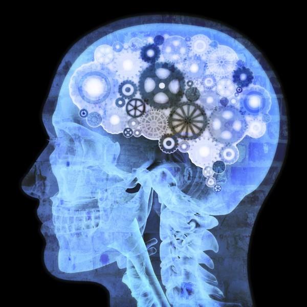 脳内麻薬をコントロールしてあなたの不安を取り除く方法